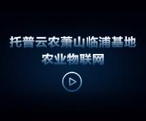 托普云农萧山临浦基地农业物联网视频