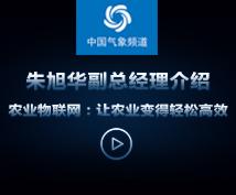 中国气象频道——朱旭华副总经理介绍农业物联网:让农业变得轻松高效
