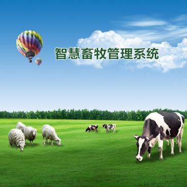 智慧畜牧管理系统