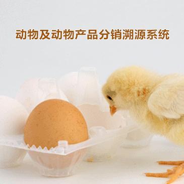动物及动物产品分销溯源系统