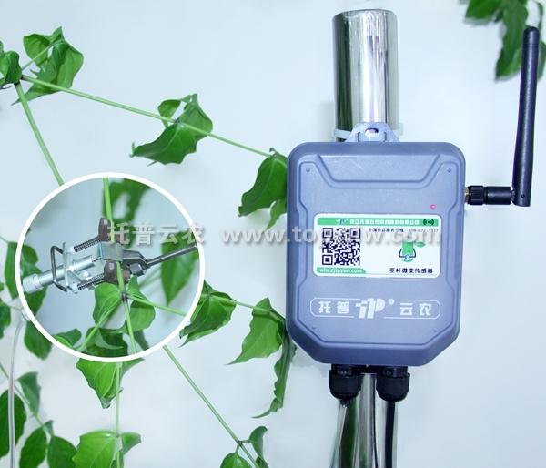 茎杆微变化传感器