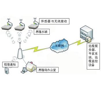 乐鱼平台网站物联网为中华绒螯蟹提供完美水环境